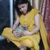 giving reiki to pets