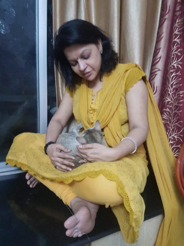 giving reiki to pets