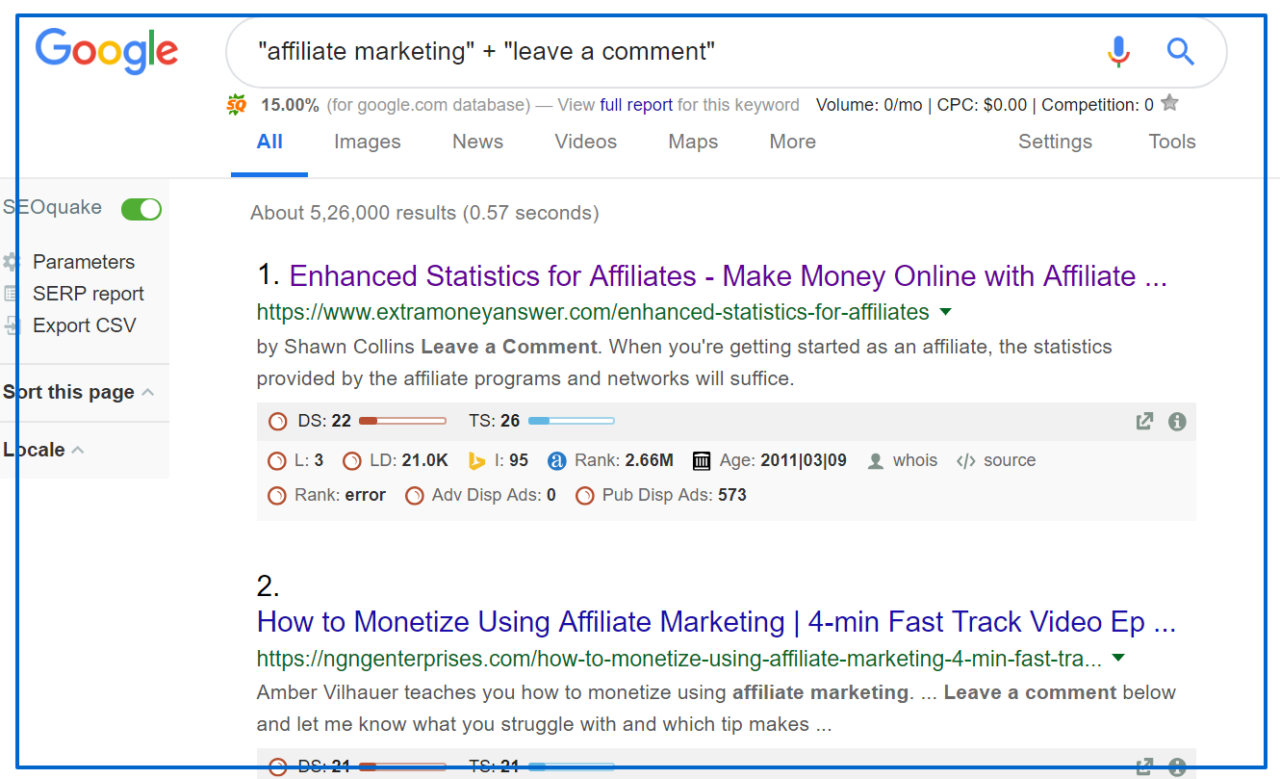 affiliate marketing leave a comment Google Search