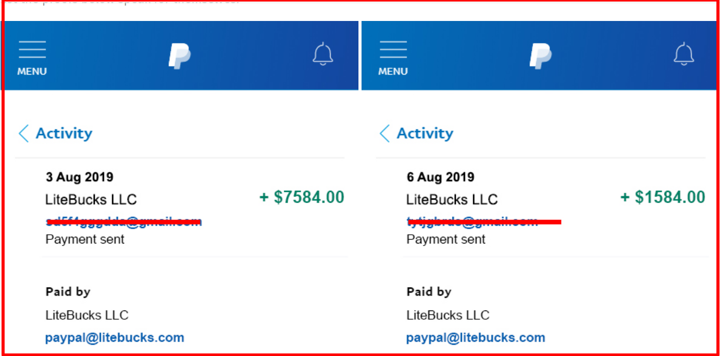 fake Payment proofs by litebucks.com