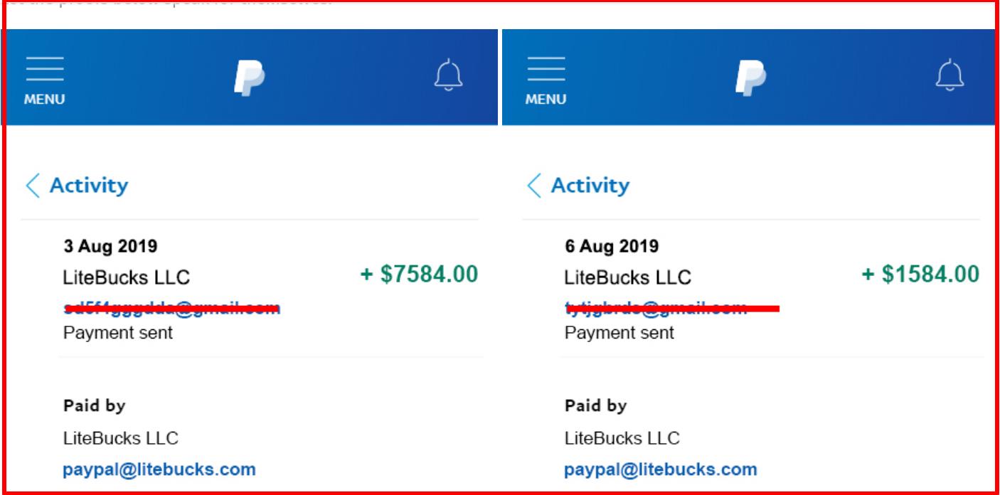 fake Payment proofs by litebucks.com