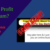 feature image of instant profit sites review