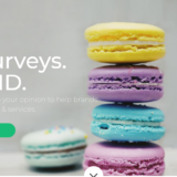 homepage of survey junkie
