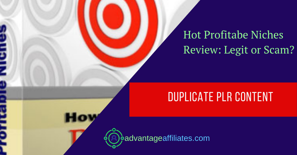 hot profitable niches review feature image